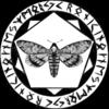 kronikinocnejzmory's avatar