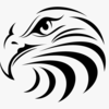 krot95's avatar