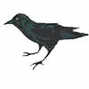 kspudw's avatar
