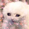 KSslut's avatar