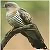 kuckuk333's avatar