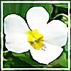 kuda14's avatar