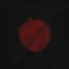 KungaKun's avatar