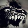 kunnings's avatar