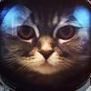 kusbick19's avatar