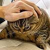 kushhhhh's avatar