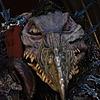 Kylestor's avatar