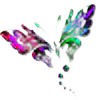 kymagraph's avatar