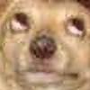 kyubae's avatar