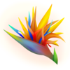 l3irdOfParadise's avatar