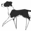 Lady-Roac's avatar