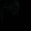 ladycuriosity's avatar