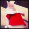 ladydunce's avatar