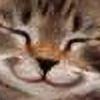 LadyPisces's avatar
