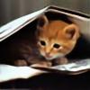 LadySmartcat's avatar