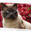 lain666's avatar