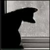Lainders's avatar
