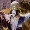 LanzonesMK's avatar