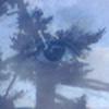 lapetitballerina's avatar