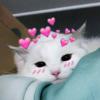 LargeThralls's avatar