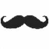 LarmeDePaix's avatar