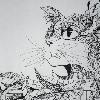 laubeez's avatar