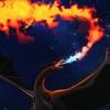 laurel-tree's avatar