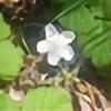 lavaland422's avatar