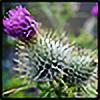Lavander-Thistle's avatar