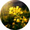 Lavender-plz's avatar