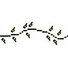 leafborderplz's avatar