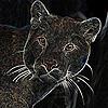 Leawildcat's avatar
