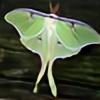 ledybug's avatar