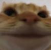 legoweb10's avatar