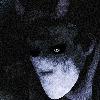LeimortSam's avatar