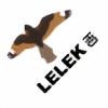 lelekHD's avatar