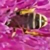 LemnosExplorer's avatar