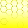 Lemon-Enthusiast's avatar