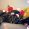 Lemongiraffe07's avatar