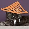 LenaKemp's avatar