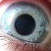 Leonieuss's avatar