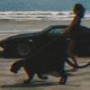 LeOwll's avatar
