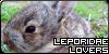 Leporidae-Lovers's avatar