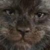 LesousChristoslover's avatar