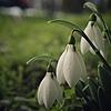 lettherebelove01's avatar
