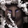 Levadra's avatar