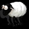 Lexi-B9's avatar