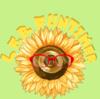 LFBFUNTIMER's avatar