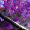 lfirisever's avatar