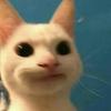 LHSMM's avatar